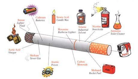 các chất có trong thuốc lá - ungthuhoc.vn